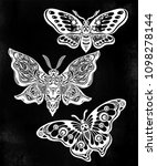 a collection of butterflies or...   Shutterstock .eps vector #1098278144