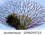singapore 6 april 2017  gardens ... | Shutterstock . vector #1098295715