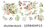 .vector.  botanical... | Shutterstock .eps vector #1098404915