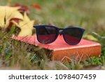 sunglasses eyewear glasses...   Shutterstock . vector #1098407459