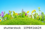 grass and wild flowers... | Shutterstock . vector #1098416624