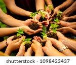 group of volunteers planting... | Shutterstock . vector #1098423437