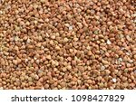 buckwheat and grains for a meal | Shutterstock . vector #1098427829