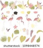 tropics vector illustration ... | Shutterstock .eps vector #1098448574
