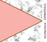 vector marble texture design... | Shutterstock .eps vector #1098455411