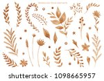 watercolor illustration. floral ... | Shutterstock . vector #1098665957