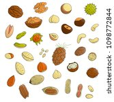 vector set of colored nuts.... | Shutterstock .eps vector #1098772844
