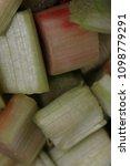 fresh rhubarb in a sieve | Shutterstock . vector #1098779291