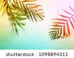 summer tropical palm leaves... | Shutterstock . vector #1098894311