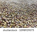 view of cassia seed | Shutterstock . vector #1098929075