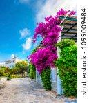 bodrum  turkey   may 25  2018   ... | Shutterstock . vector #1099009484