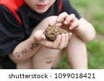 a dirty little boy who has been ... | Shutterstock . vector #1099018421