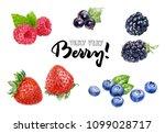 wild berries watercolor | Shutterstock . vector #1099028717