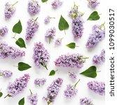 flower pattern background of... | Shutterstock . vector #1099030517