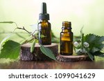 essential oils for aromatherapy | Shutterstock . vector #1099041629