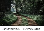 path through forest into light | Shutterstock . vector #1099072385