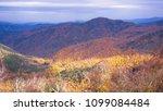 bolu turkey 11.11.2017 forest... | Shutterstock . vector #1099084484