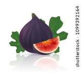 photo realistic figs with leafs.... | Shutterstock .eps vector #1099392164