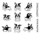 vector cartoon character boston ... | Shutterstock .eps vector #1099423661