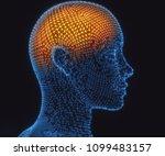 3d illustration. human brain in ... | Shutterstock . vector #1099483157
