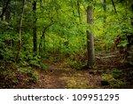 woods path   Shutterstock . vector #109951295