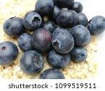 macro photo of bilberries  ...   Shutterstock . vector #1099519511