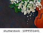 close up of violin with... | Shutterstock . vector #1099551641