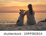 ... | Shutterstock . vector #1099582814