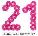 arabic numeral 21  twenty one ...   Shutterstock . vector #1099595177