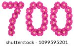 Small photo of Arabic numeral 700, seven hundred, from pink flowers of flax, isolated on white background