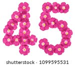 arabic numeral 45  forty five ... | Shutterstock . vector #1099595531