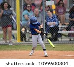 Young Boy Batting  Catching And ...