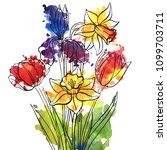 vector drawing flowers of... | Shutterstock .eps vector #1099703711