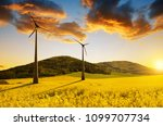 field of rapeseed and wind... | Shutterstock . vector #1099707734