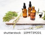 bottles with organic essential... | Shutterstock . vector #1099739201