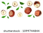 hazelnuts with leaves with copy ... | Shutterstock . vector #1099744844