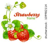 vector strawberry frame. red... | Shutterstock .eps vector #109982114