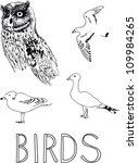 hand draw birds illustration | Shutterstock .eps vector #109984265