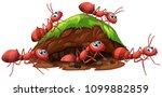 a fire red ants and hole... | Shutterstock .eps vector #1099882859