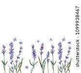violet lavender. floral... | Shutterstock . vector #1099938467
