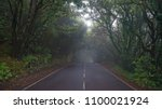 foggy forest road. misty... | Shutterstock . vector #1100021924