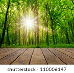 wood textured backgrounds  on... | Shutterstock . vector #110006147