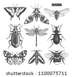 vector collection of high... | Shutterstock .eps vector #1100075711