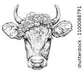 hand drawn portrait of cute cow ... | Shutterstock .eps vector #1100088791
