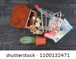 shopping concept with trolley ... | Shutterstock . vector #1100132471