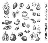 vector tropical fruits hand... | Shutterstock .eps vector #1100139761