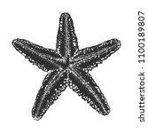 engraved style illustration for ... | Shutterstock . vector #1100189807