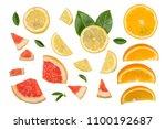 sliced pieces of grapefruit ... | Shutterstock . vector #1100192687