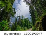 a path leading into a stormy... | Shutterstock . vector #1100193047