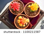 looking down on three colourful ... | Shutterstock . vector #1100211587